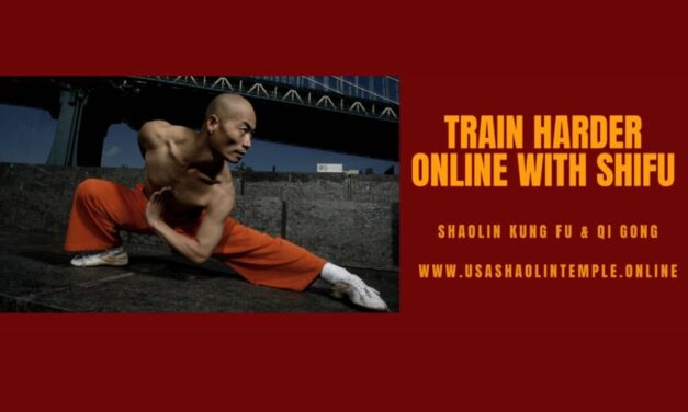 * TRAIN WITH SHIFU ONLINE