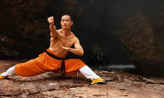 Train with Shifu with our Online Courses